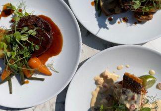 Charwood food dishes